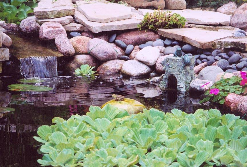 Koi ponds water plants in the winter for Plastic water garden pond