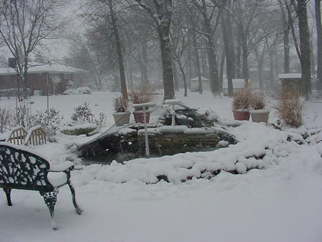 Koi ponds the pond in a winter snow storm for Koi pond temperature winter